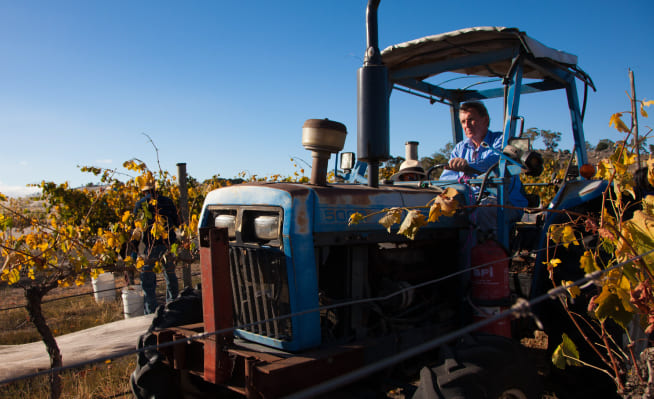 Farmer at McIvor Estate on tractor