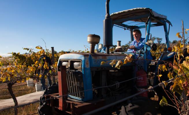 Farmer at McIvor Estate on tractor